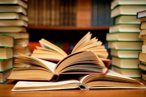 böcker-som-gör-dig-till-ett-bloggproffs1