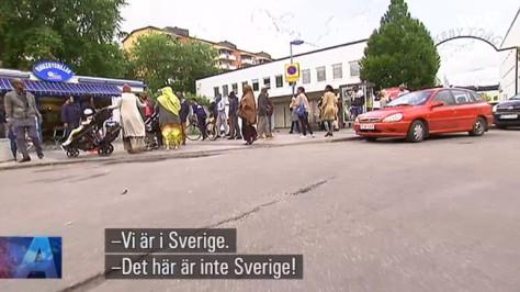MonaWalter_SVT_Rinkeby650
